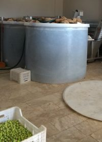 Zeytin Tankı